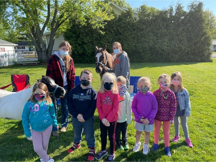 The Kindergarten students loved the horses!