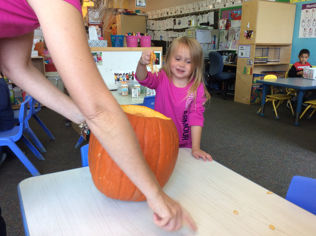 Feeling the insides of the pumpkin.