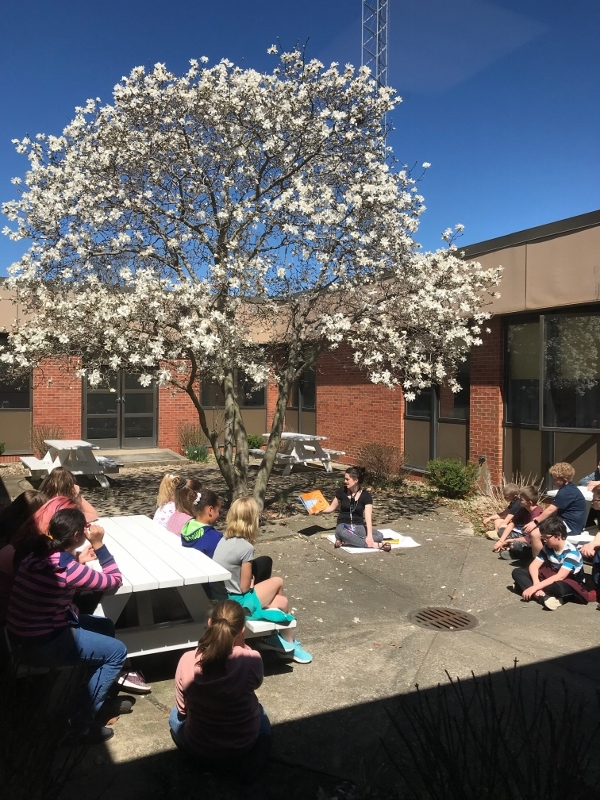 Students read a book under the blooming magnolia tree.